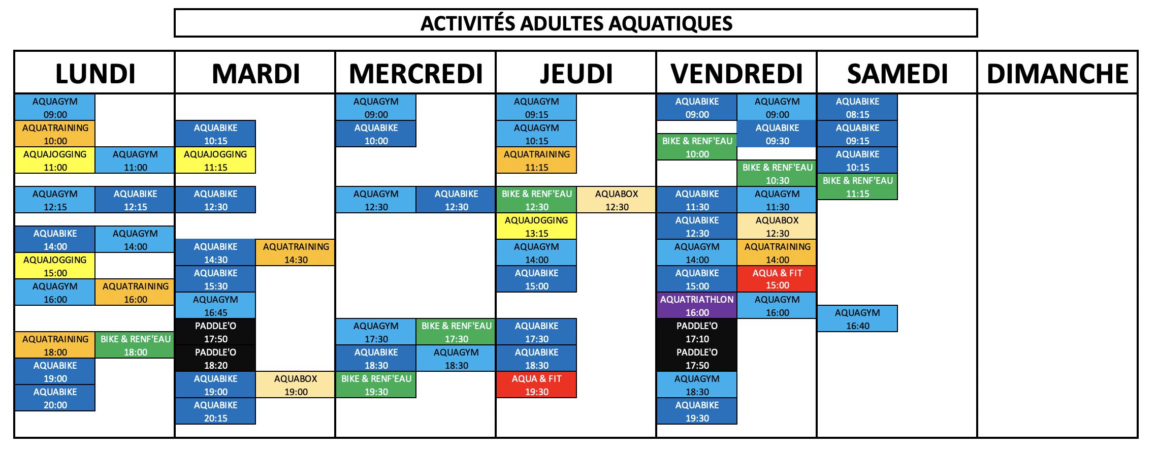 planning-adulte-au-2009